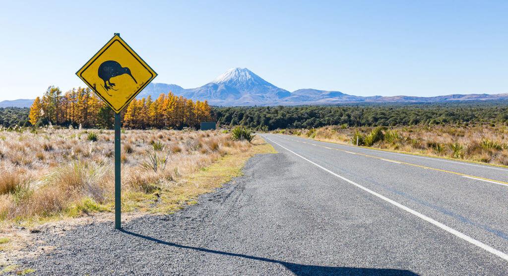 Auswandern nach Neuseeland – Auswandern ins Land der Kiwis
